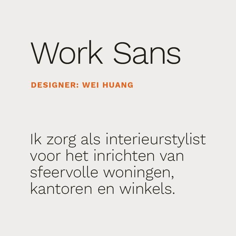 Typografie interieurstylist work sans 13